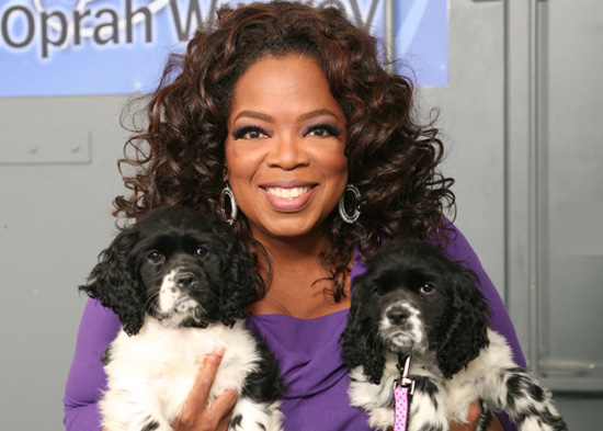 Oprah's New Puppies Named Sunny and Lauren