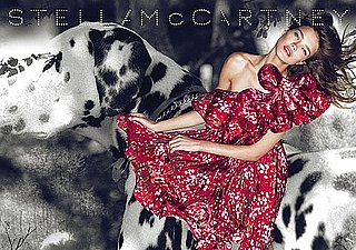 Stella McCartney 2010 Spring Ad Campaign Featuring Natalia Vodianova