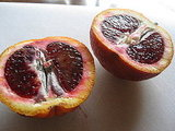 Blood Orange French 75 Recipe 2010-02-19 10:18:04
