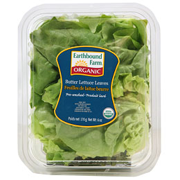 Chicken and Cashews in Lettuce Cups Recipe 2010-04-20 10:02:25