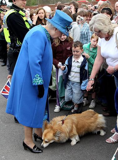 Photos of Queen Elizabeth With Corgi