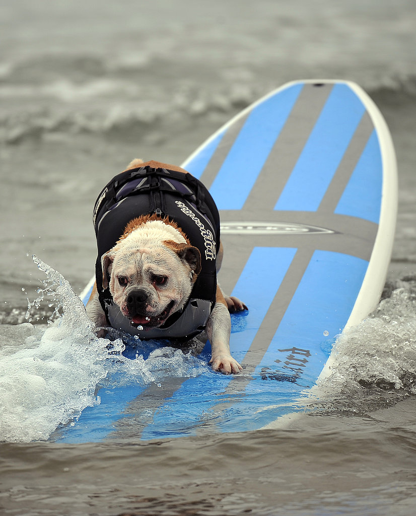 Ripping the Wave