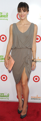 Katharine McPhee Wears Alice + Olivia Dress to Benefit in NYC
