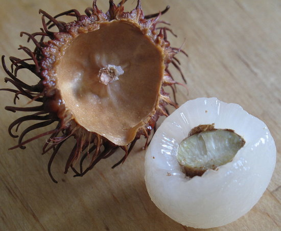 All About Rambutans