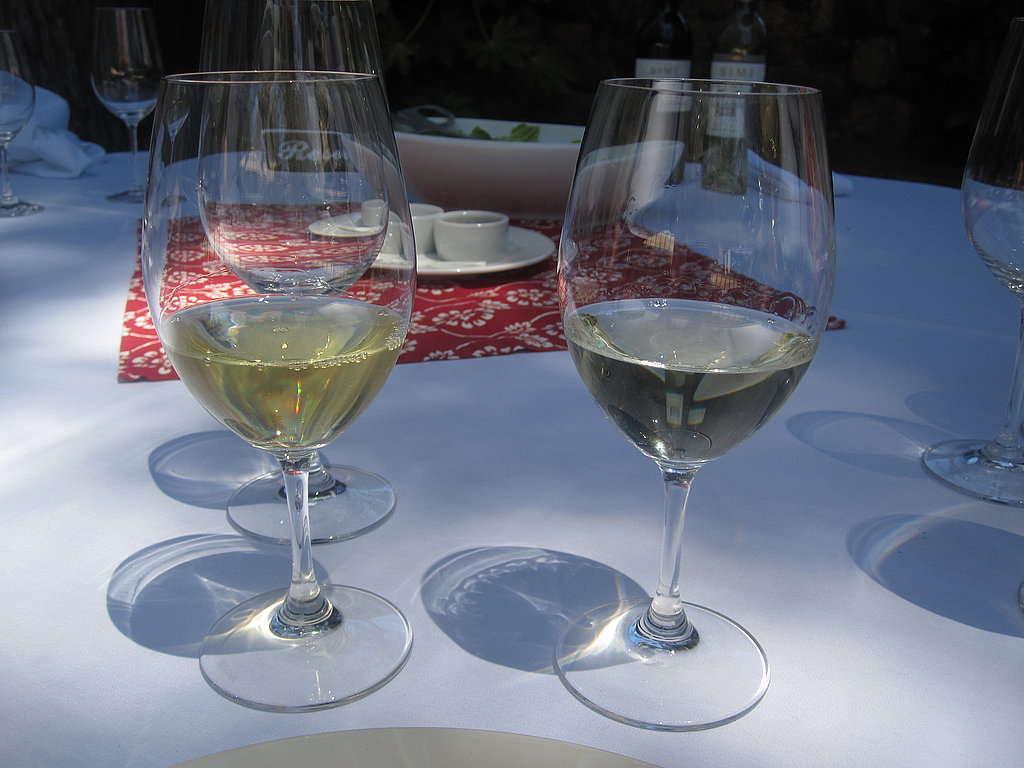 After the hour-long tour, I was excited to finally taste the wines. Luke led us through a compared tasting. On the left is the Chardonnay and on the right is the Sauvignon Blanc. Normally, I'm a Sav Blanc girl, but I much preferred the smooth freshness of the Chardonnay.