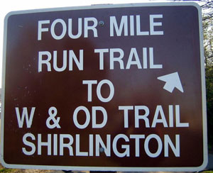 Tips For Newbies to Trail Running