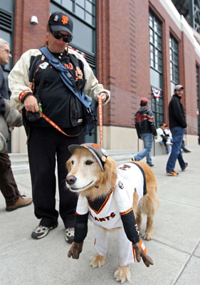 Pictures of San Francisco Giants Dog