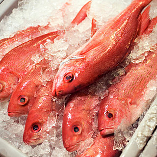 Safe and Eco-Friendly Seafood Choices