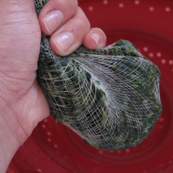 How to Squeeze Water Out of Frozen Spinach