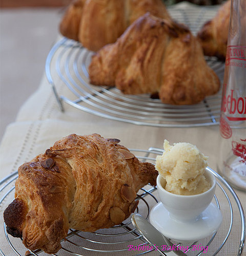 Yummy in My Tummy, Almond Croissant Just for You