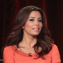Desperate Housewives Final Season Interview at TCA