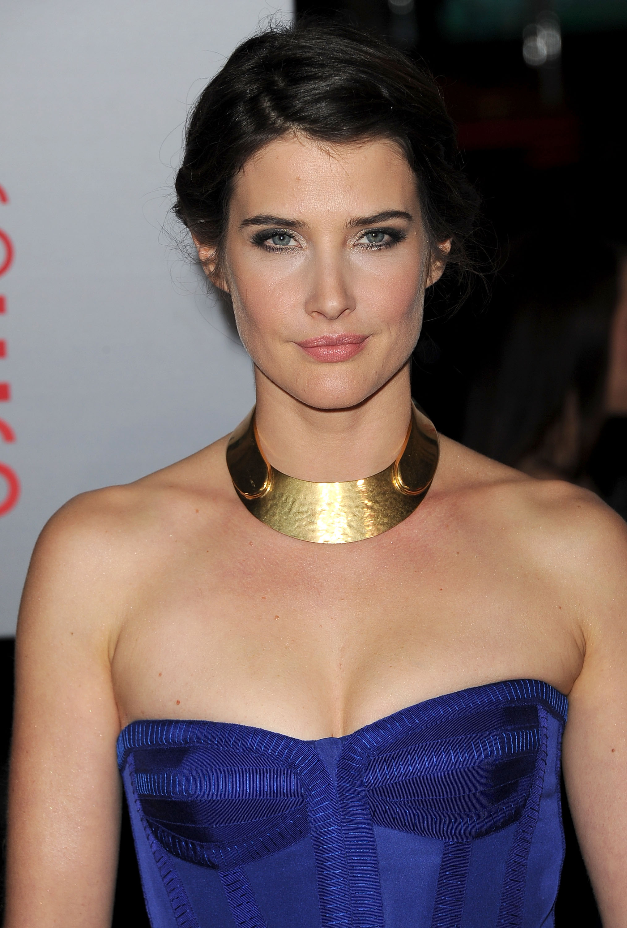 Cobie Smulders was gorgeous in blue.