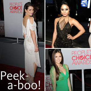 Celebrity Red Carpet Trends: Sexy Sheer Inserts at the 2012 People's Choice Awards. Lea Michele, Vanessa Hugdens and more!
