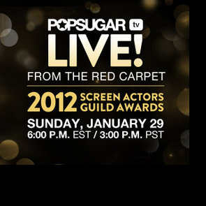 Watch the SAG Awards Live 2012