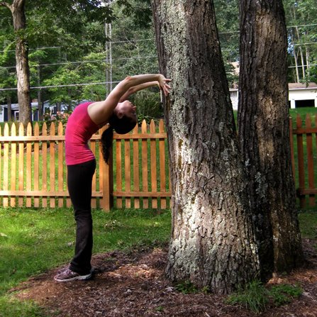 Outdoor Tree Stretches