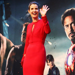 Cobie Smulders Avengers Info