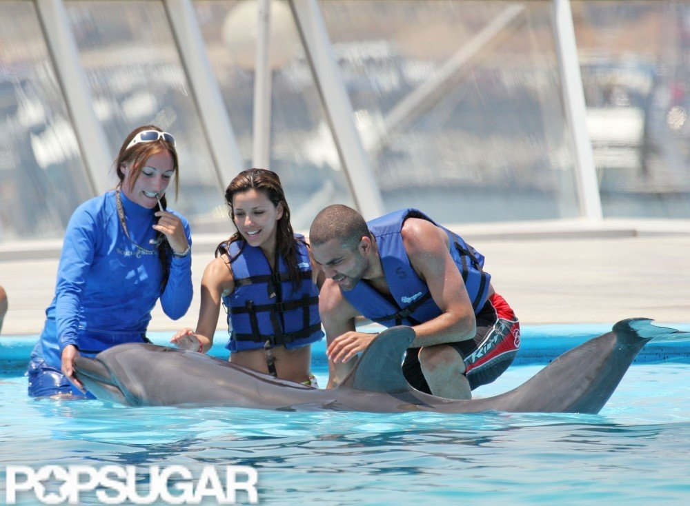 Eva Longoria and Tony Parker got up close and personal with some dolphins during their June 2006 stay in Cabo.