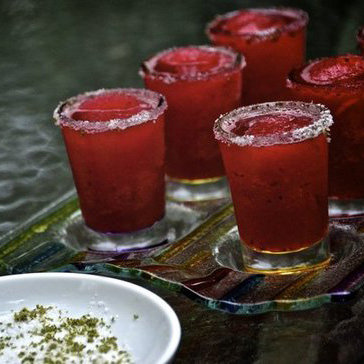 Hibiscus Margarita Recipe