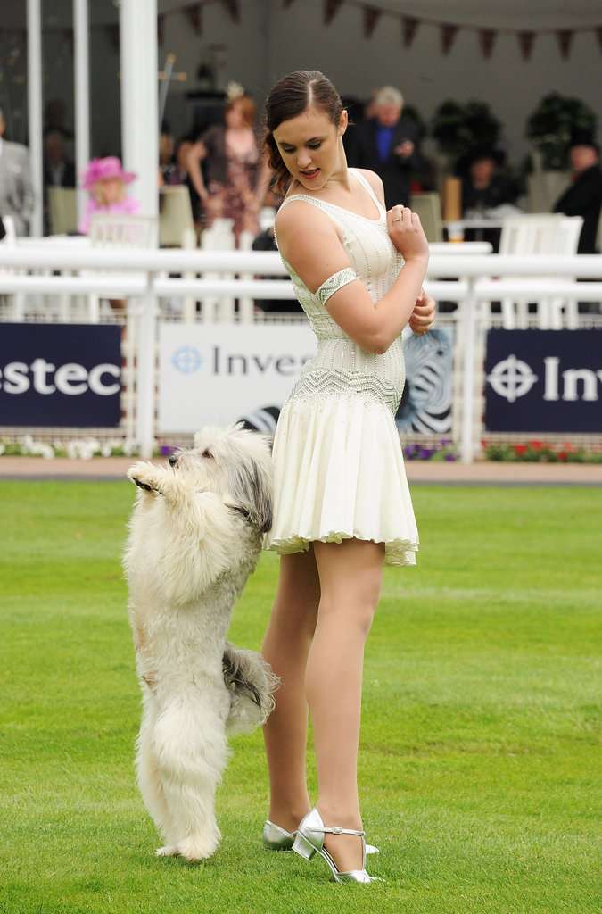Britain's Got Talent winners Pudsey the dog and Ashleigh Butler show off their skills at the derby.