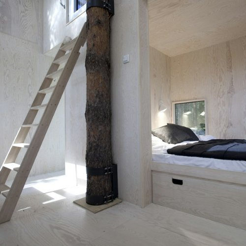 Treehouse Hotel in Sweden Pictures