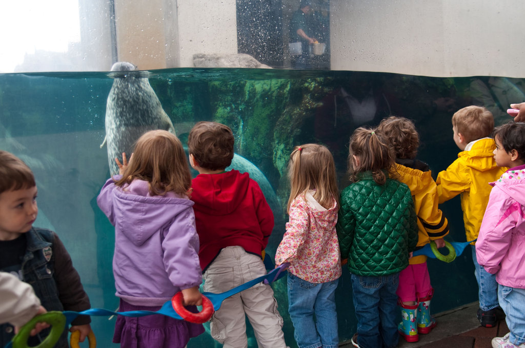 New England Aquarium: Boston, MA
