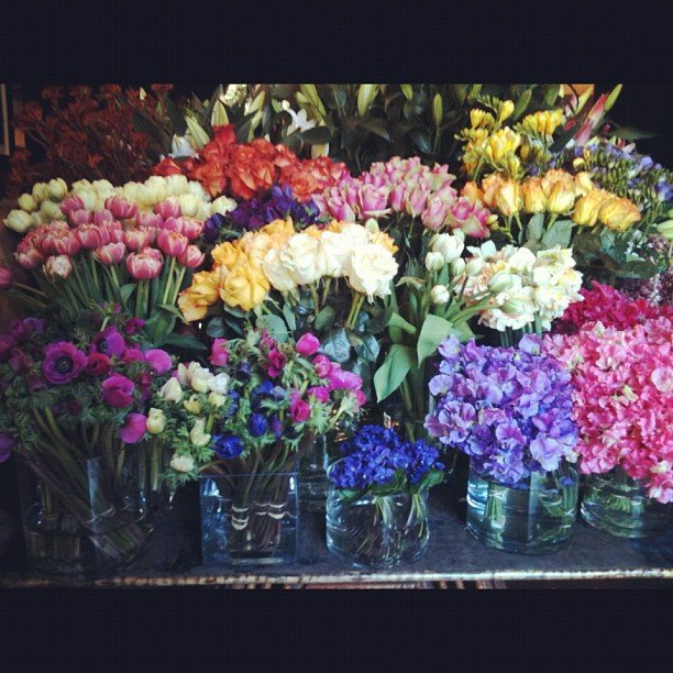 Spring has sprung! Ali snapped a pic of what might be happiest flower selection we've ever seen.