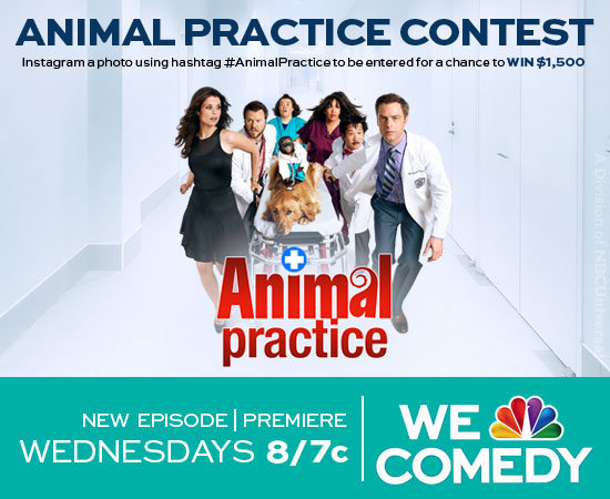 ANIMAL PRACTICE CONTEST: INSTAGRAM A PIC OF YOUR PET FOR A CHANCE TO WIN $1,250