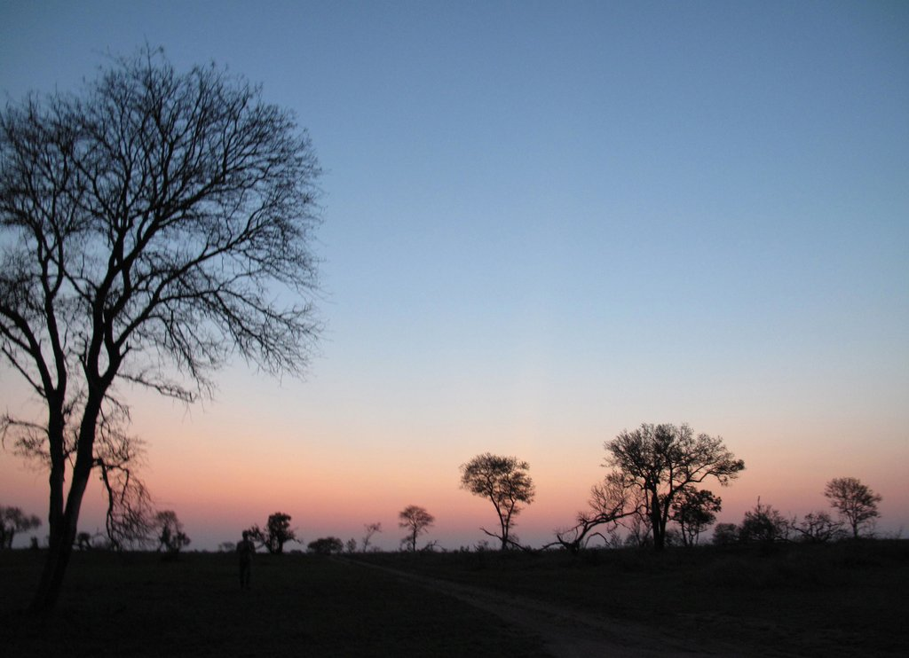 The Big African Sky
