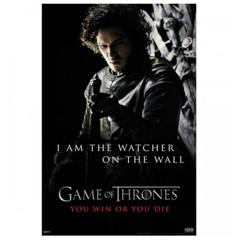 Jon Snow Poster ($20)