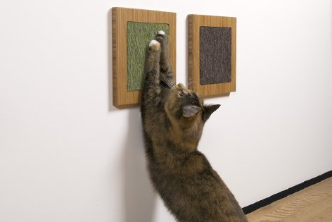 Don't have a lot of space in your house? The Itch scratch pads ($50 each) are mounted flat on your wall and look more like art than cat furniture. An added bonus: you can put catnip behind it or rub some into the pads for added scratching pleasure.