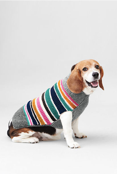 Lands' End Ribbed Collar Stripe Pet Sweater