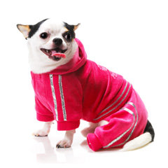When your dog is not dressed to the nines, she'll want to don soft velour loungewear ($39) like a celebrity on her off day.
