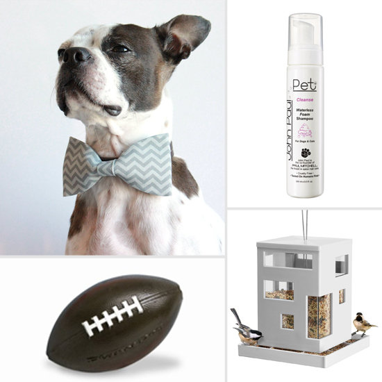 Start the New Year Right With Our January Pet Must Haves