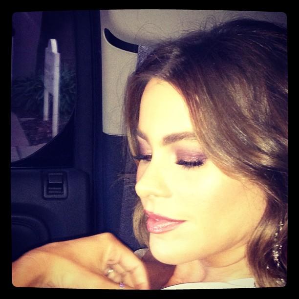 Before the SAG Awards, Sofia Vergara showed off her pretty pink eye shadow. Source: Instagram user sofiavergara