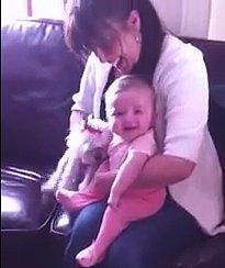 (VIDEO) Baby CRACKS UP Over Little Dog