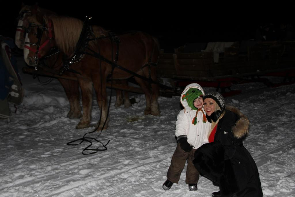 Christina Aguilera and Max Bratman took a horse-drawn carriage ride through the snow during the holidays. Source: Twitter user TheRealXtina