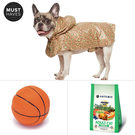 Bring It on, Spring! POPSUGAR Pets' March Must Haves