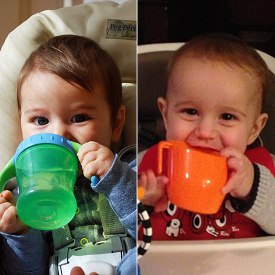 Sippy Cup Showdown — Which Cup Takes First Place?