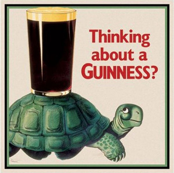 Thinking about grabbing a Guinness? This turtle might just convince you to go for it.