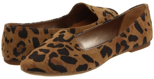 Madden Girl - Hoops (Leopard) - Footwear