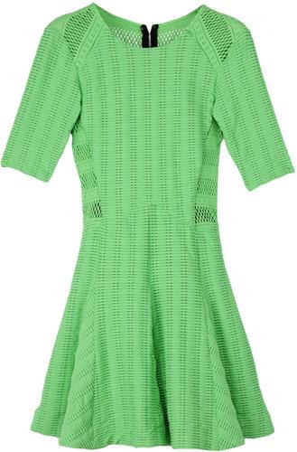 Niki Flare Dress