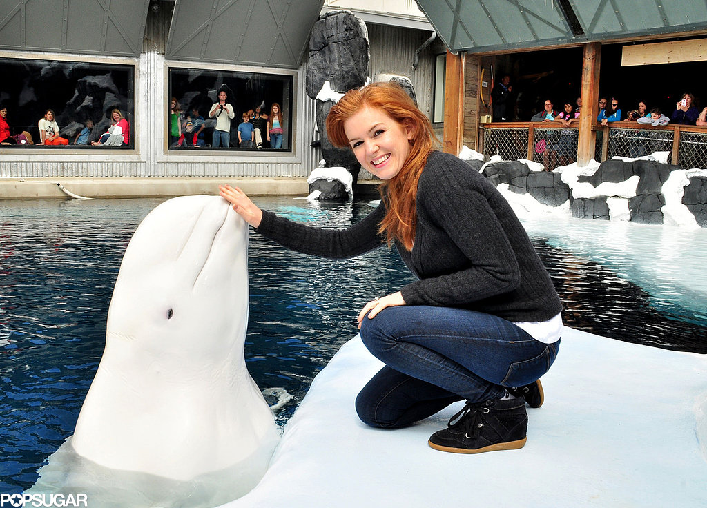 Isla Fisher posed with Nanuq.