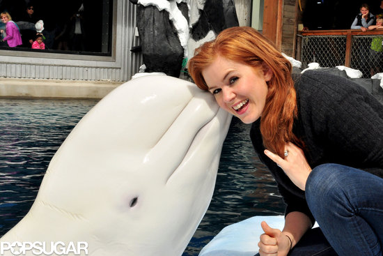 Isla Fisher got some love from Nanuq the whale.