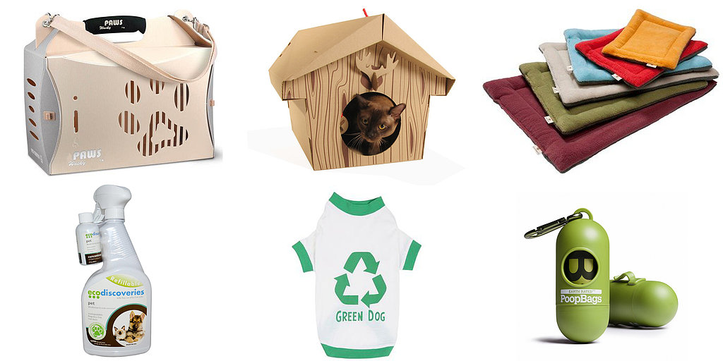 10 Eco-Friendly Pet Essentials For Earth Day