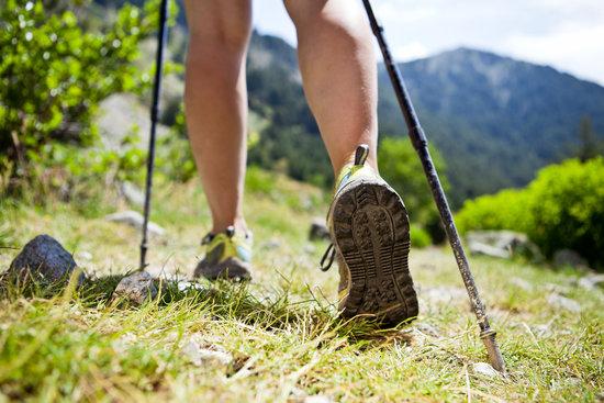10 Bush Walking Safety Tips