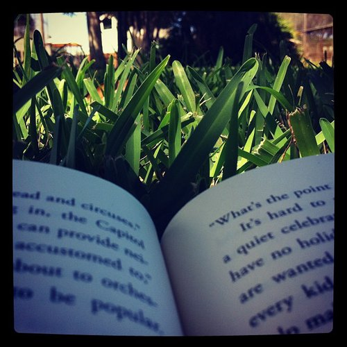 Mandicoyne was reading amongst the grass.