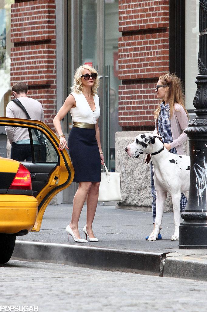 Cameron Kisses Her Costar in Between Canine Scenes