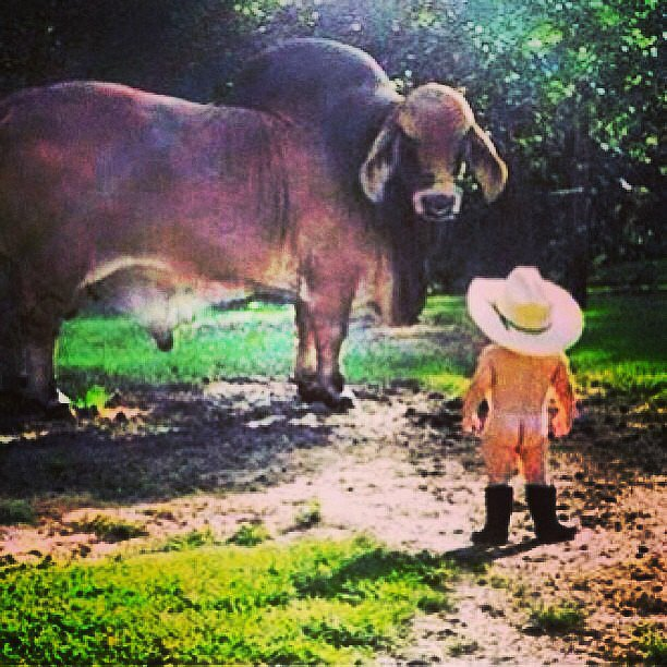 Josh Henderson revealed a picture of himself as a baby cowboy.  Source: Instagram user joshhendu