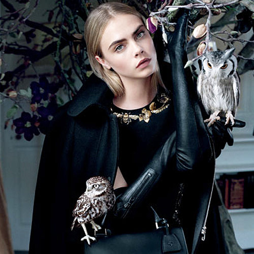 Cara Delevingne for Mulberry A/W 2013