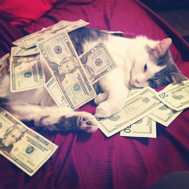 """I just love snuggling with money.""  Source: Instagram user methamphetamina"